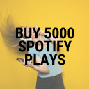 buy 5000 spotify plays