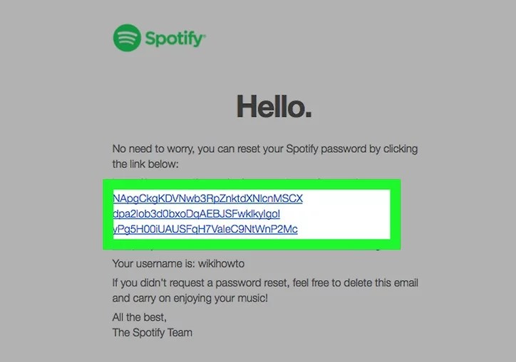 Check Link in Email to Reset Spotify Password