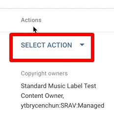 Step 4 to Remove Audio from Youtube video